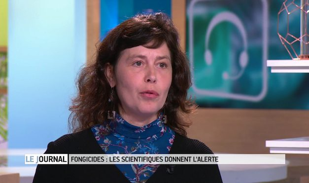 Les fongicides au journal France 5